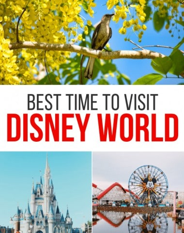 Best Time of Year to Visit Disney