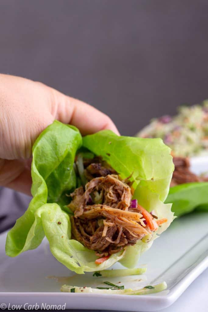 Crockpot low carb pulled pork recipe